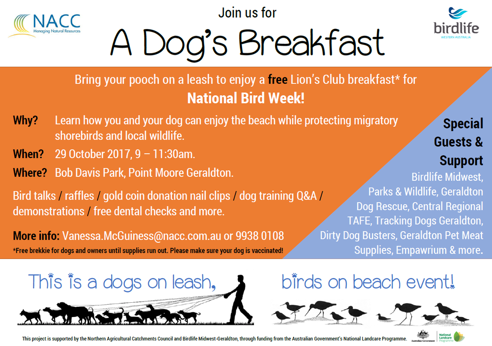 17967424_Dogs Brekkie FINAL.png