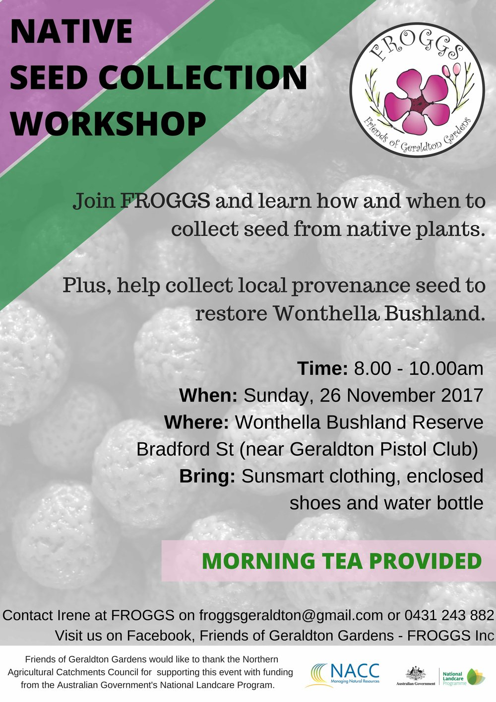 Seed Collection Workshop