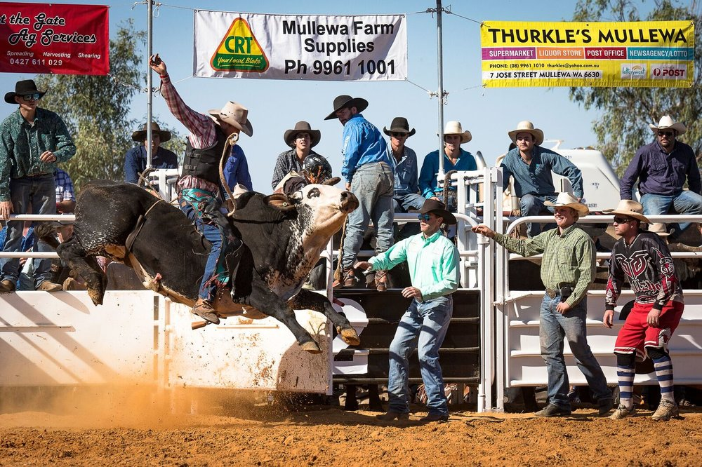 17967424_Mullewa Muster 2017-13_preview.jpeg.jpg