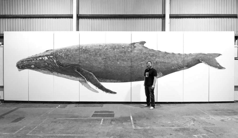 WA Artist Ross Potter and his life sized work 'WHALE' for Fremantle's High Tide Biennale in 2017.
