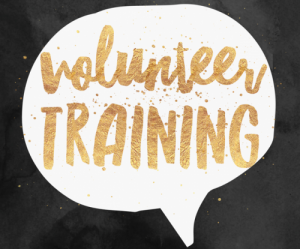 17967424_Volunteer-training-1-e1487930544816-300x249.png