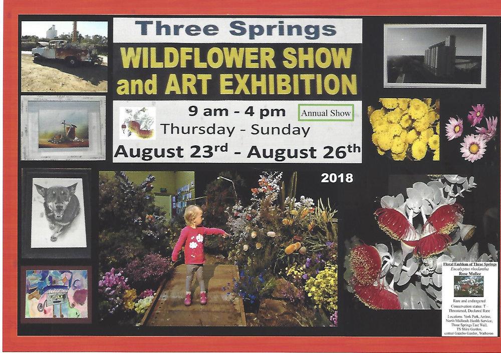 17967424_Advert A5 flyer TS Wildflower Show-1.jpg