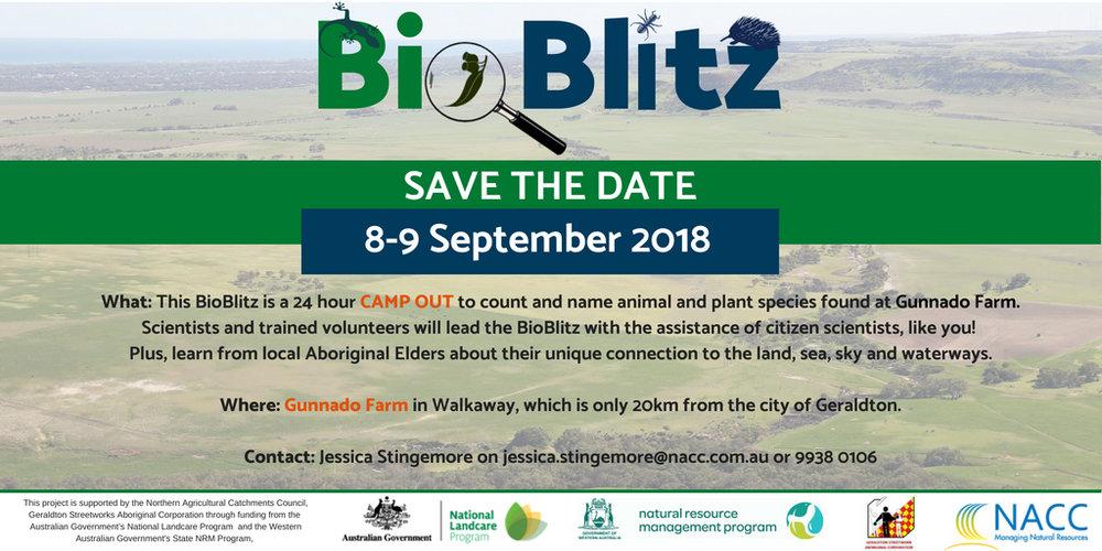 17967424_BioBlitz - Save the date.jpg