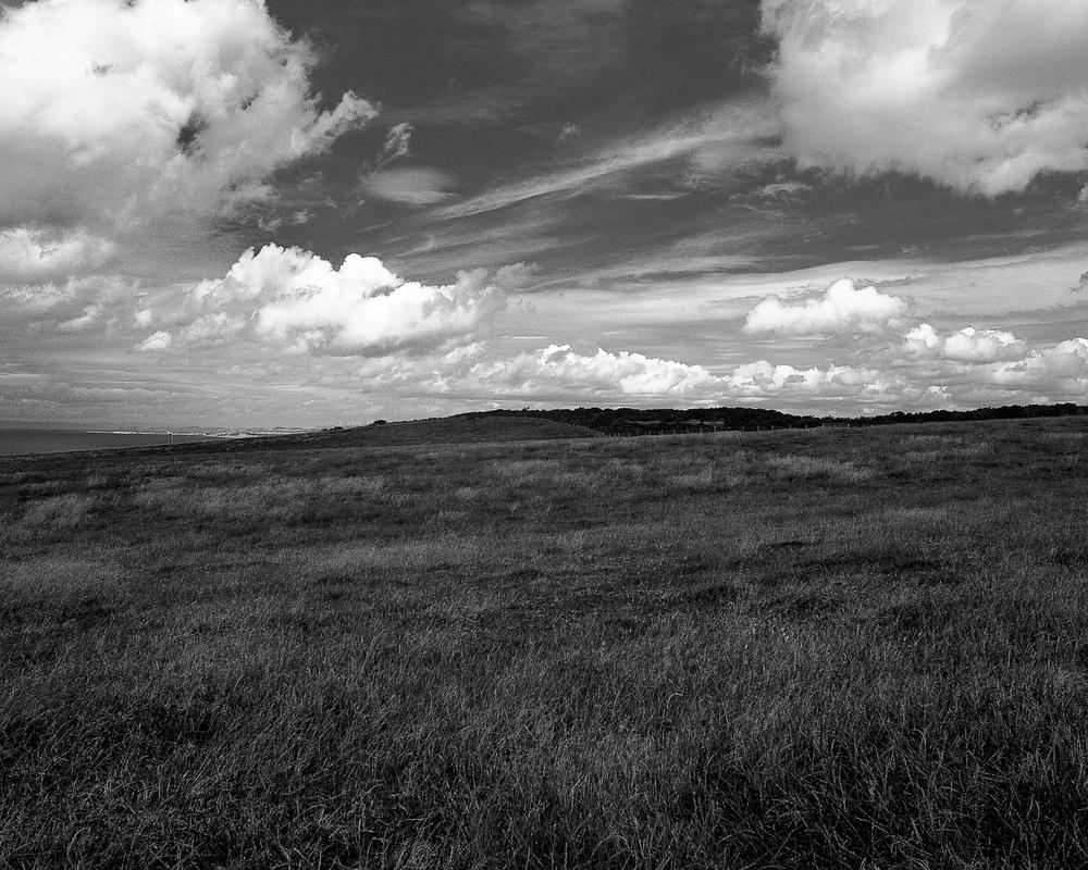 landskap2_-9.jpg