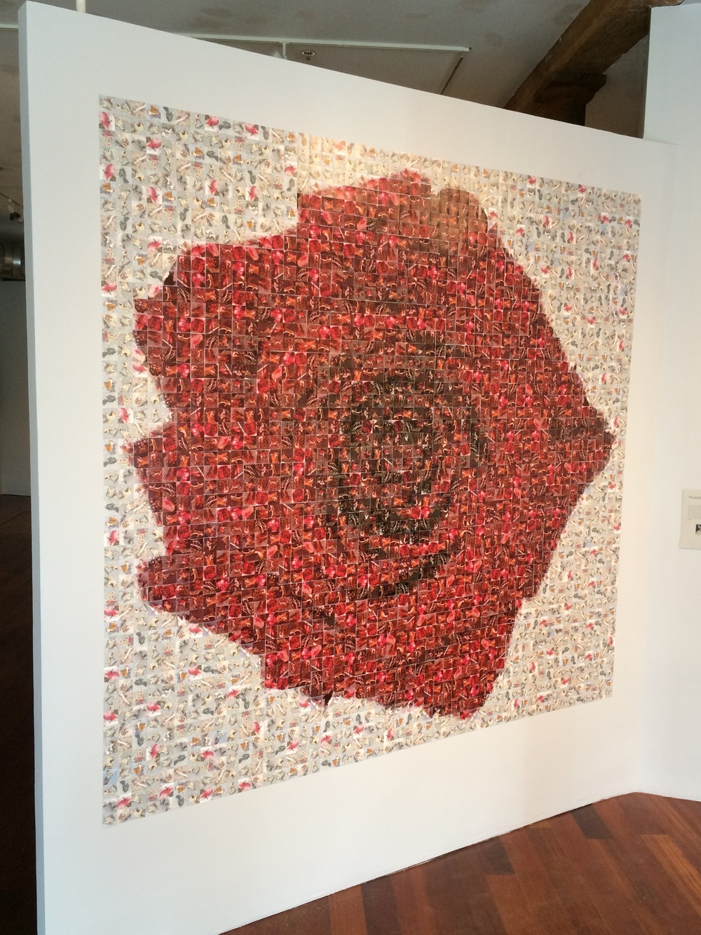 ROSEKILL, 8' x 7.5', 2,350 photos of roadkill, 2015