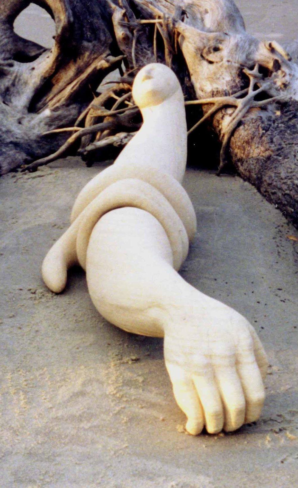 4-Drifting  Limestone Nora Valdez .jpg