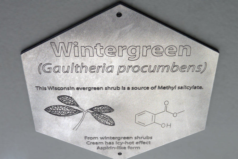 NA Plaque 3 Wintergreen.jpg