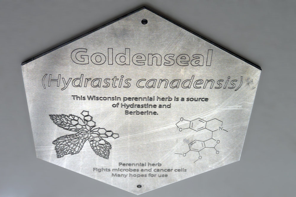 NA Plaque 5 Goldenseal.jpg