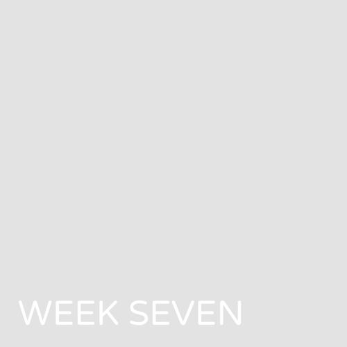 week07blankthumb.png