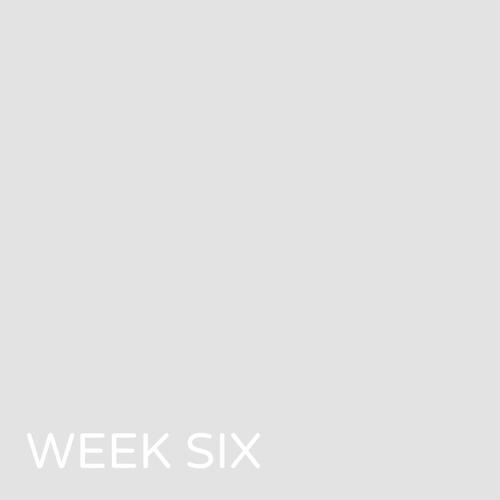 week06blankthumb.png