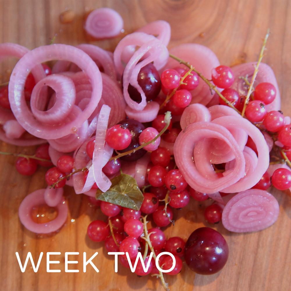 KitchenWeek3Thumb.jpg