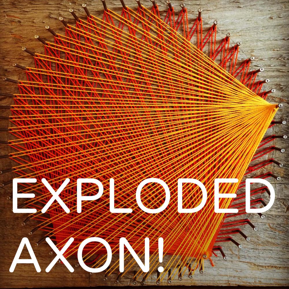 ExplodedAxon.jpg