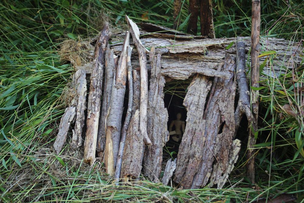 Shelter-7.jpg