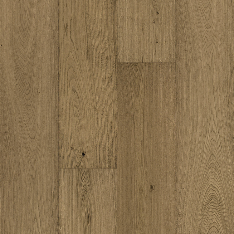 Light Brown Oak: Nature
