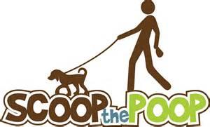 Is Dog Poop Good Fertilizer For Flowers