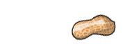 peanut.jpg