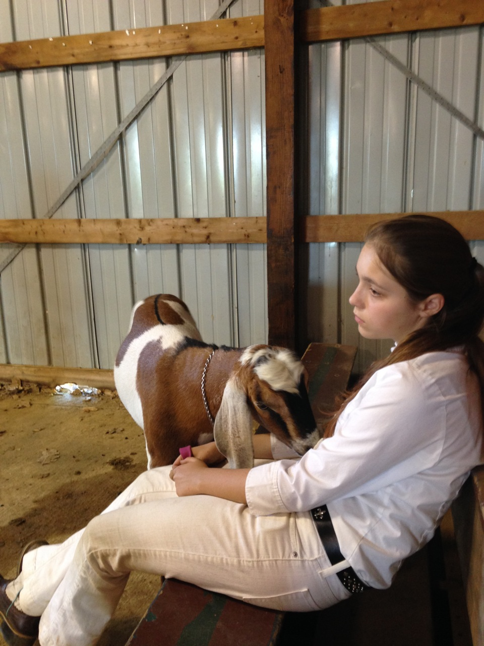 Autumn and Eddie waiting for their turn in Ring 1