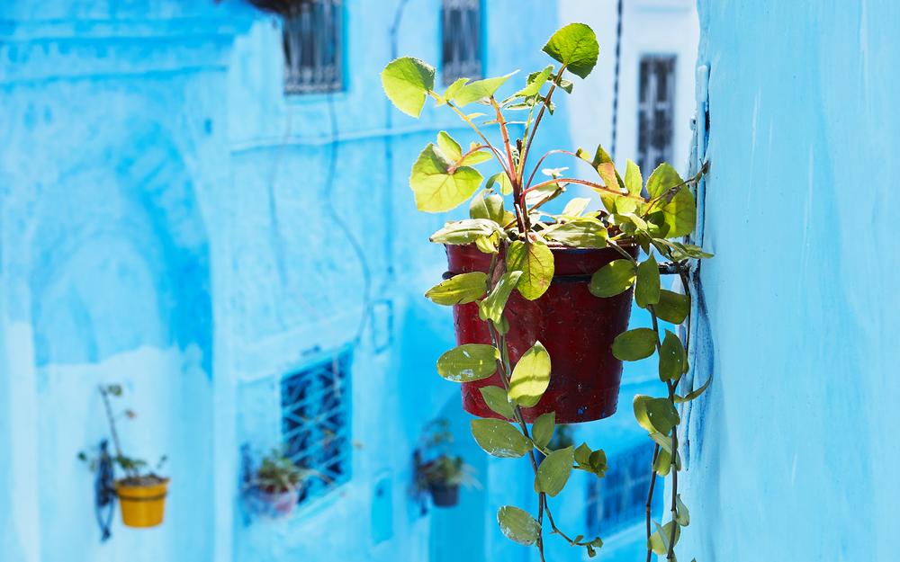 Anna_McKerrow_Morocco_04.jpg
