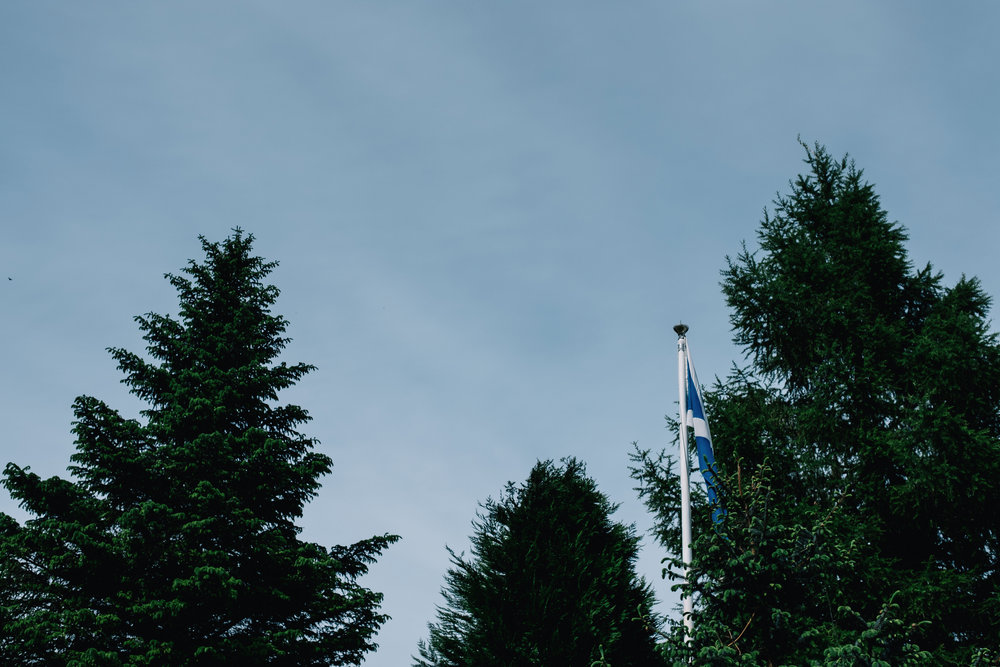 Trees and Scottish flag
