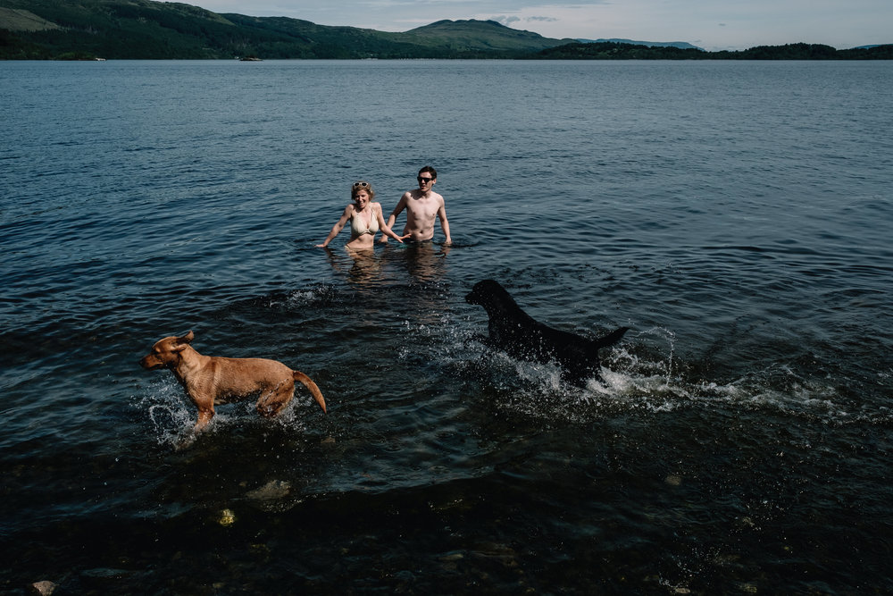 Bride, groom and two labradors swimming in Loch Lomond