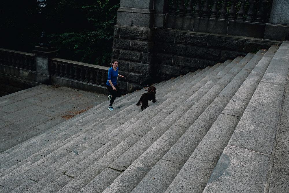Dog walker in Glasgow West End