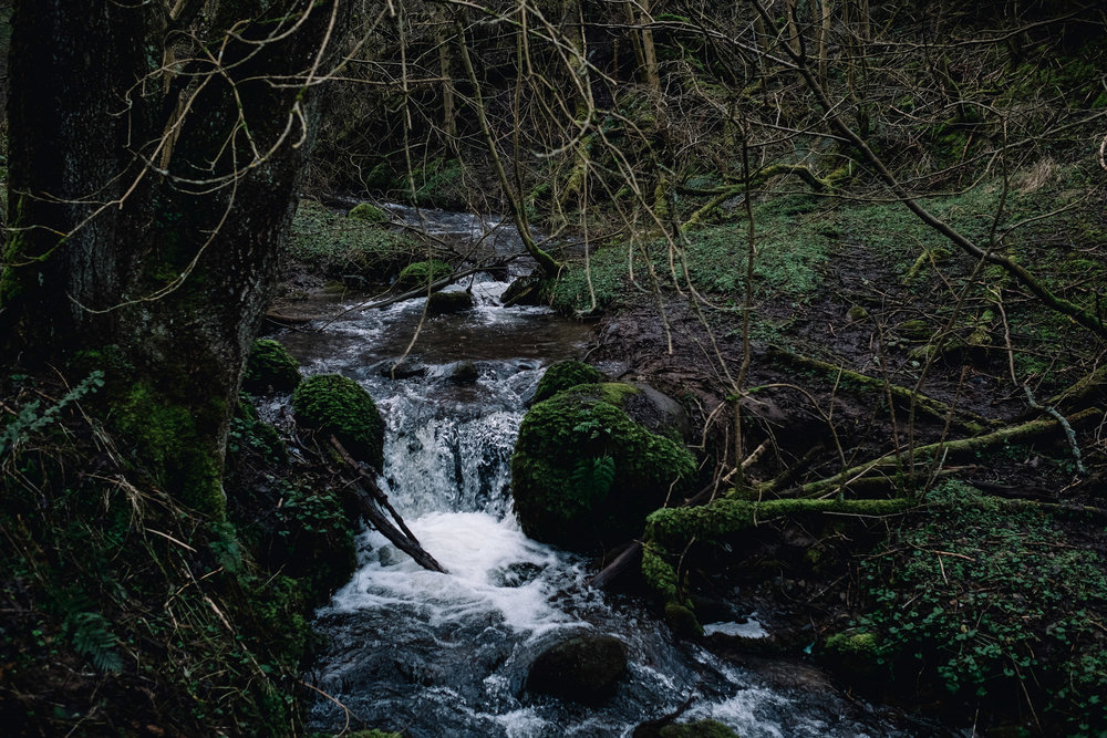 River scene in Fife.