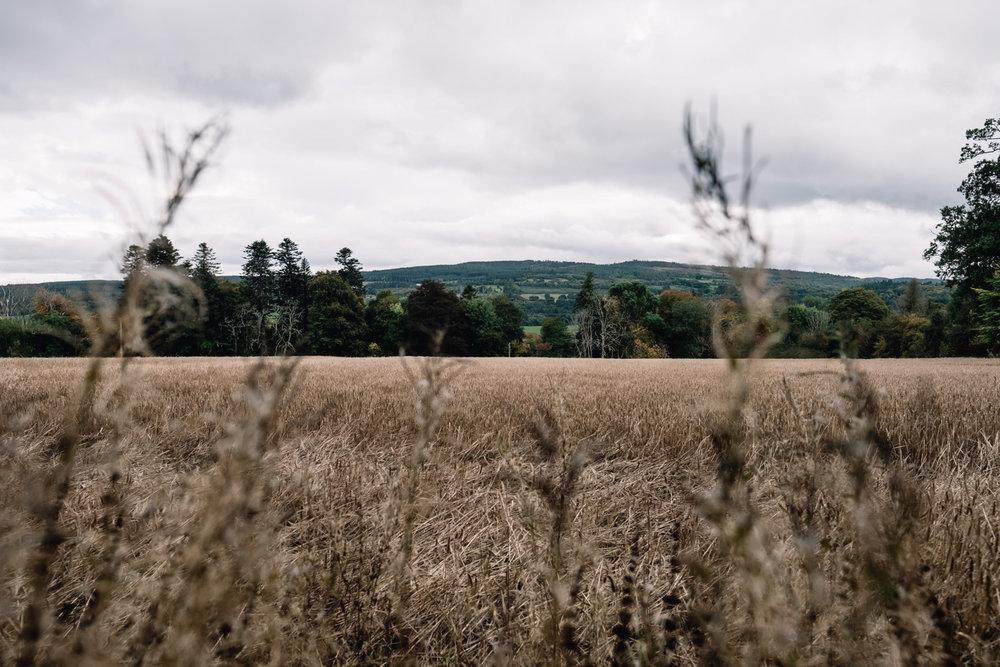 0001-Scotland-wedding-autumn.jpg