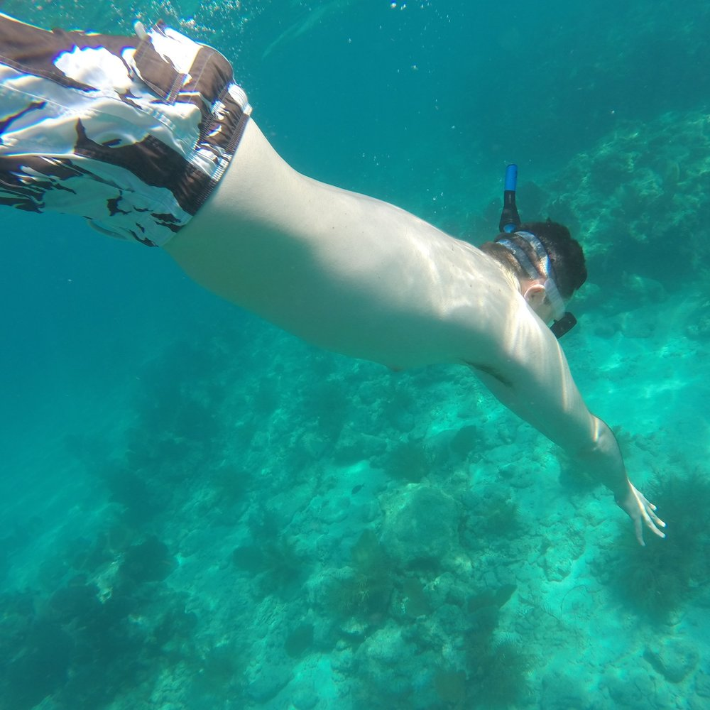 Sail Reef Snorkel  Adventure - 4, 6 and 8 hour DAY TRIPS