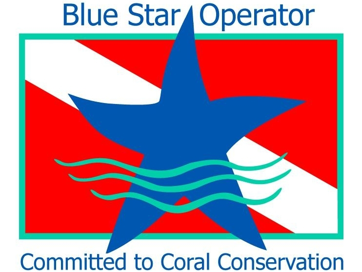 promoting responsible and sustainable diving and snorkeling practices