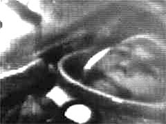 The first image of a man in space