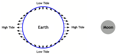 A tide schematic of the tidal effects of the Moon on the Earth with force vectors. (Image Credit: Wikimedia Commons)