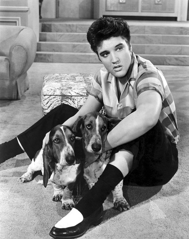 thisisnodream: Elvis Presley in Jailhouse Rock, 1957.