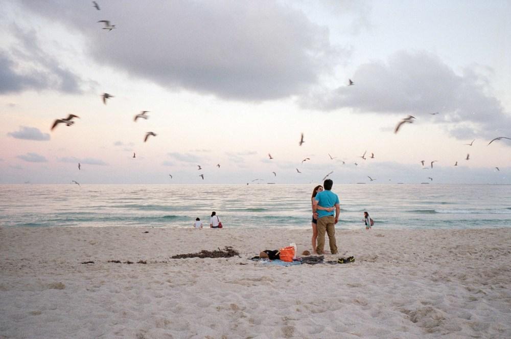 20150112-beach birds.jpg