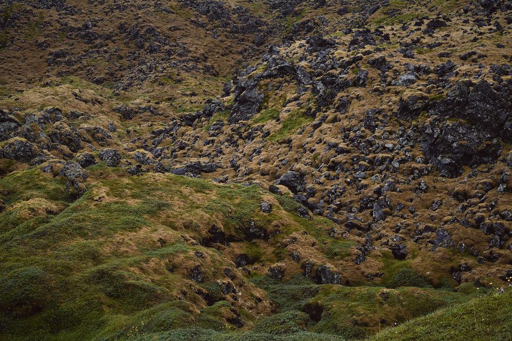 Iceland 2018-0009.jpg