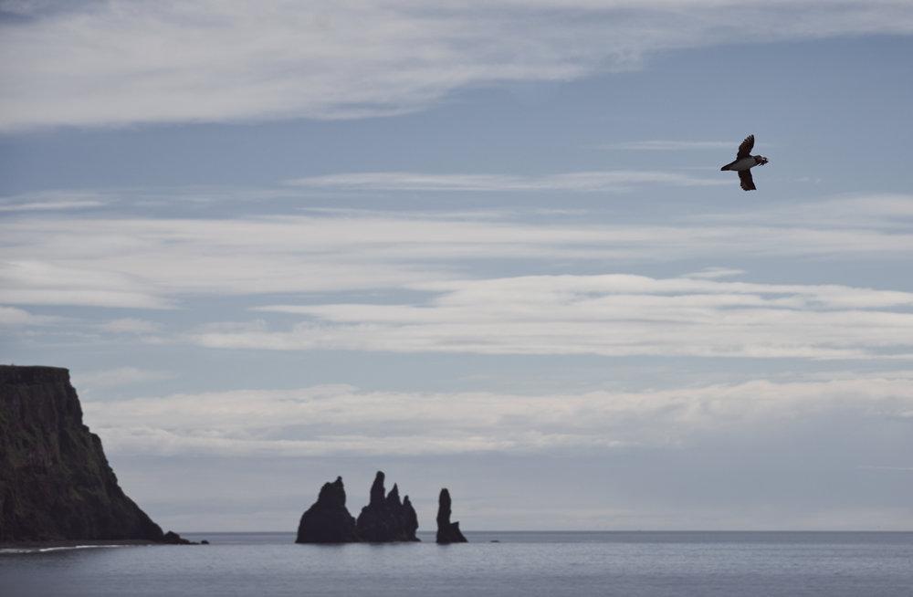 Iceland 2018-0022.jpg