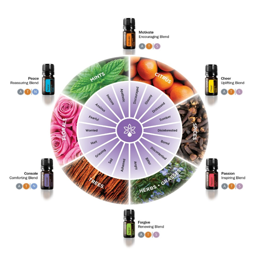 doterra-emotional-wheel-complete-01.jpg