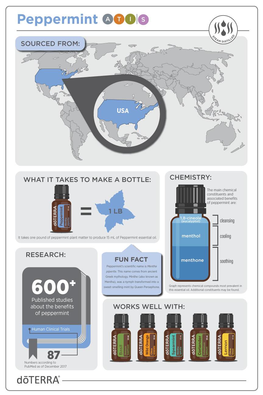 2x3-864x1296-peppermint-infographic-us-en-web.jpg
