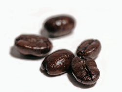 coffee_beans.png