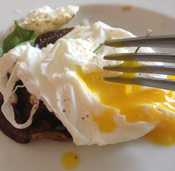 Sauteed green tomatoes topped with a poached egg and backyard herbs.