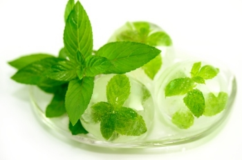Mint leaves in ice cubes.
