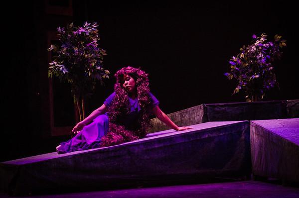 Melisande in Impressions de Pelleas. LSU Opera 2013.