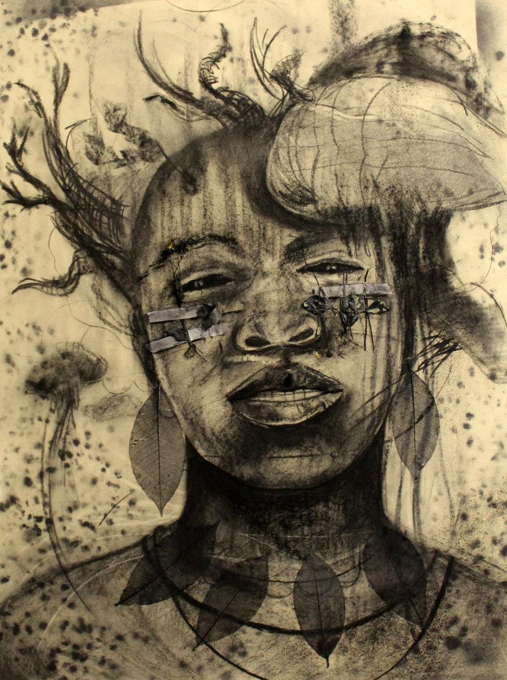 "Man of War - Skin, Teeth & Bare bones  (Carbon Drawing, El Portal, N.E. 86 St) Medium: Assorted Charcoal Densities, Aerosol Black, Flora & Fauna Dimension: 22"" x 30"" Year: 2018"