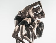 Pilobolus Sept 25th 2015