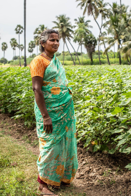 organic cotton beechstudios 05.jpg