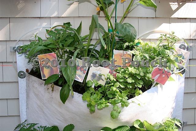 Edible Vertical Garden | Root Pouch