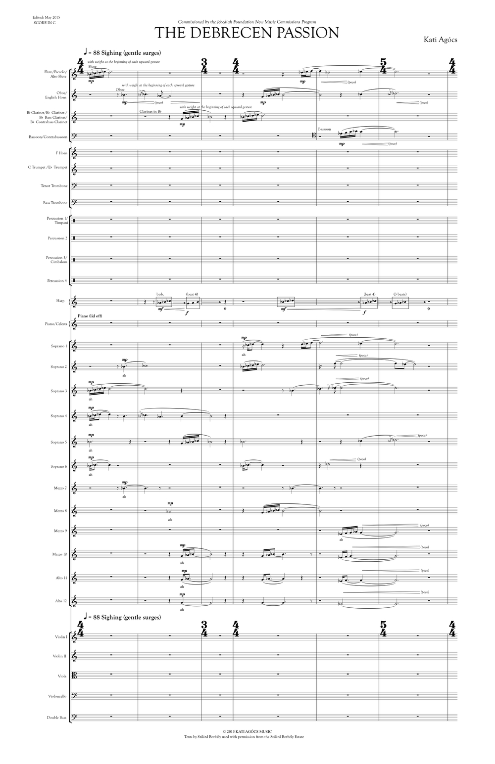 THE DEBRECEN PASSION SCORE SAMPLE.jpg
