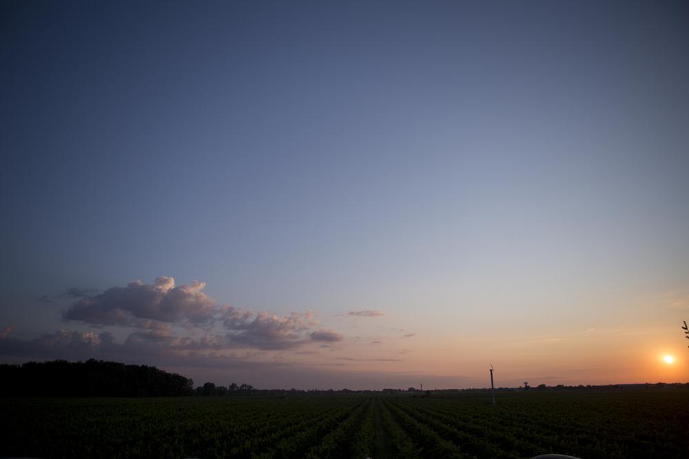 eva-derrick-photography-scenic-vineyard-slouds-sunset-photo.jpg