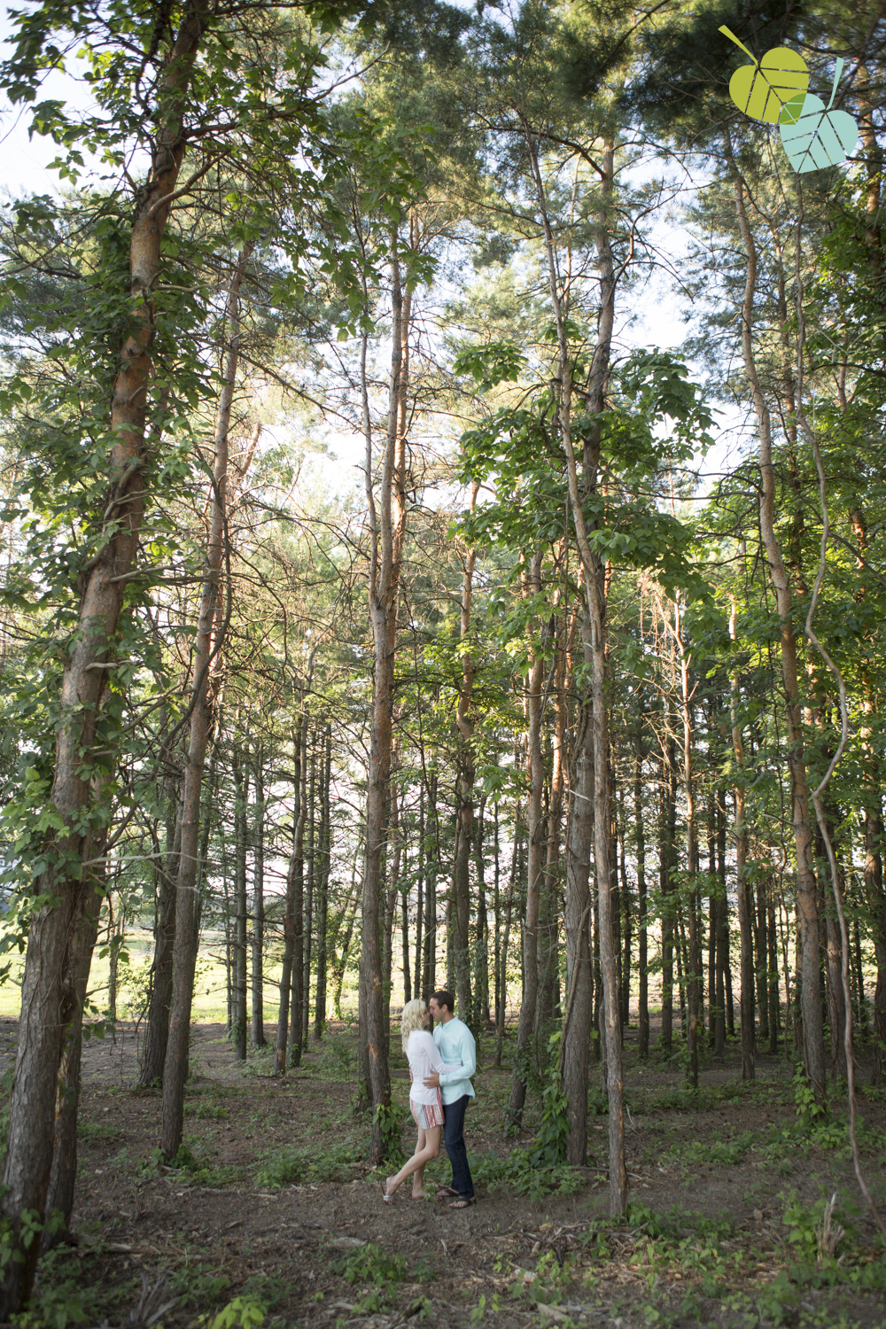 eva-derrick-photography-engagement-photographs-photo-niagara-niagara-on-the-lake-couples-wedding-forest-trees-nature-tall-trees-sunset-love-scenery-scenic-photo.jpg