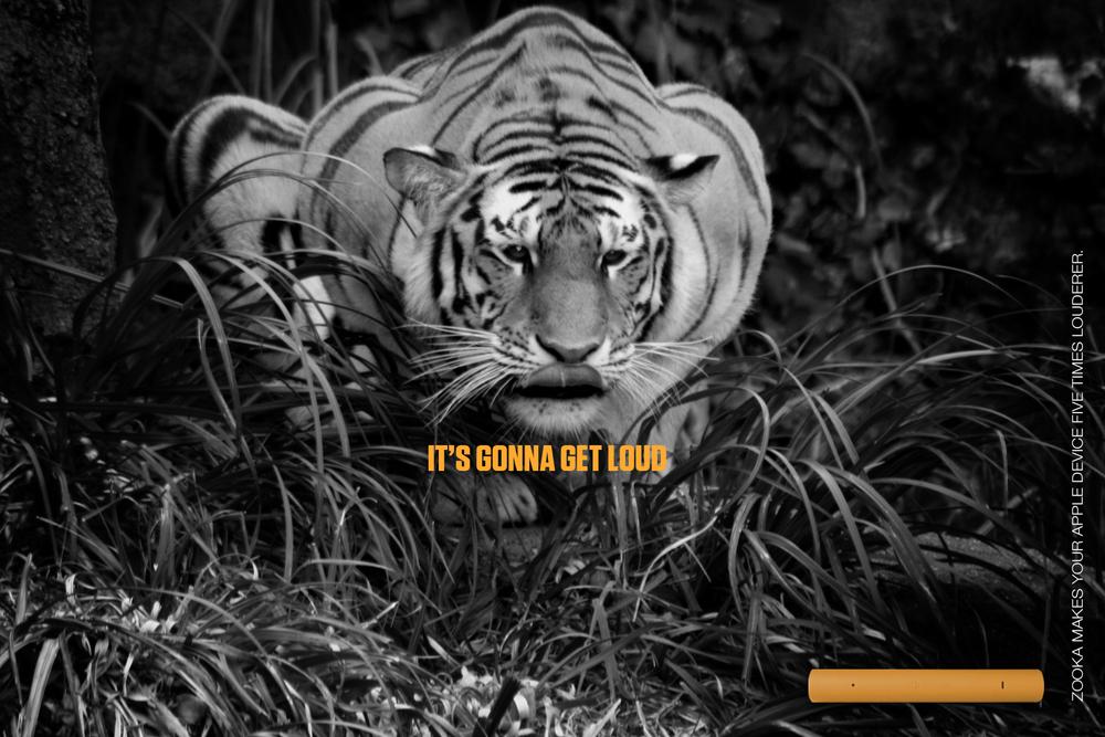 5 crouching tiger.jpg