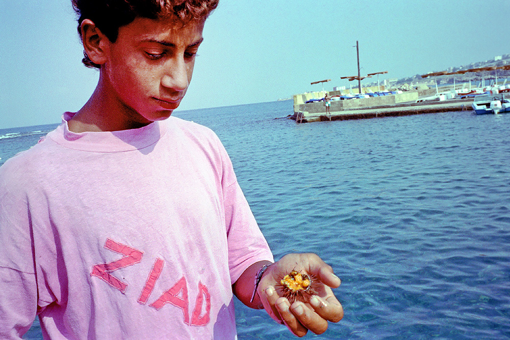 #11 - Young fisherman about to savor a freshly harvested sea urchin in Jbeil.
